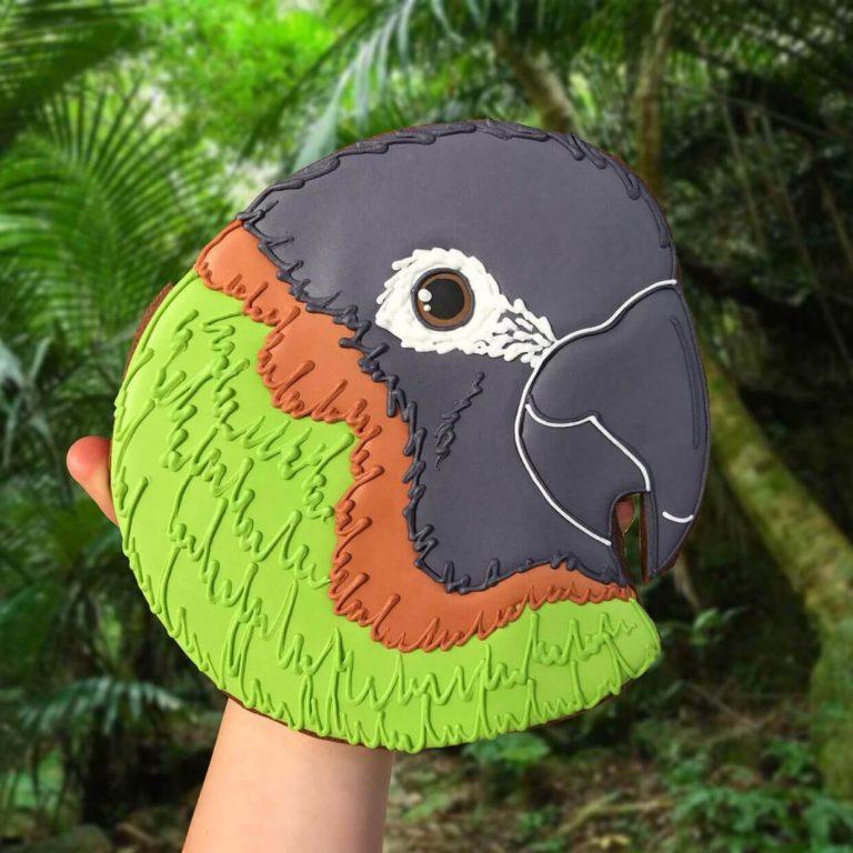 Bird Face Biscuit insta photo