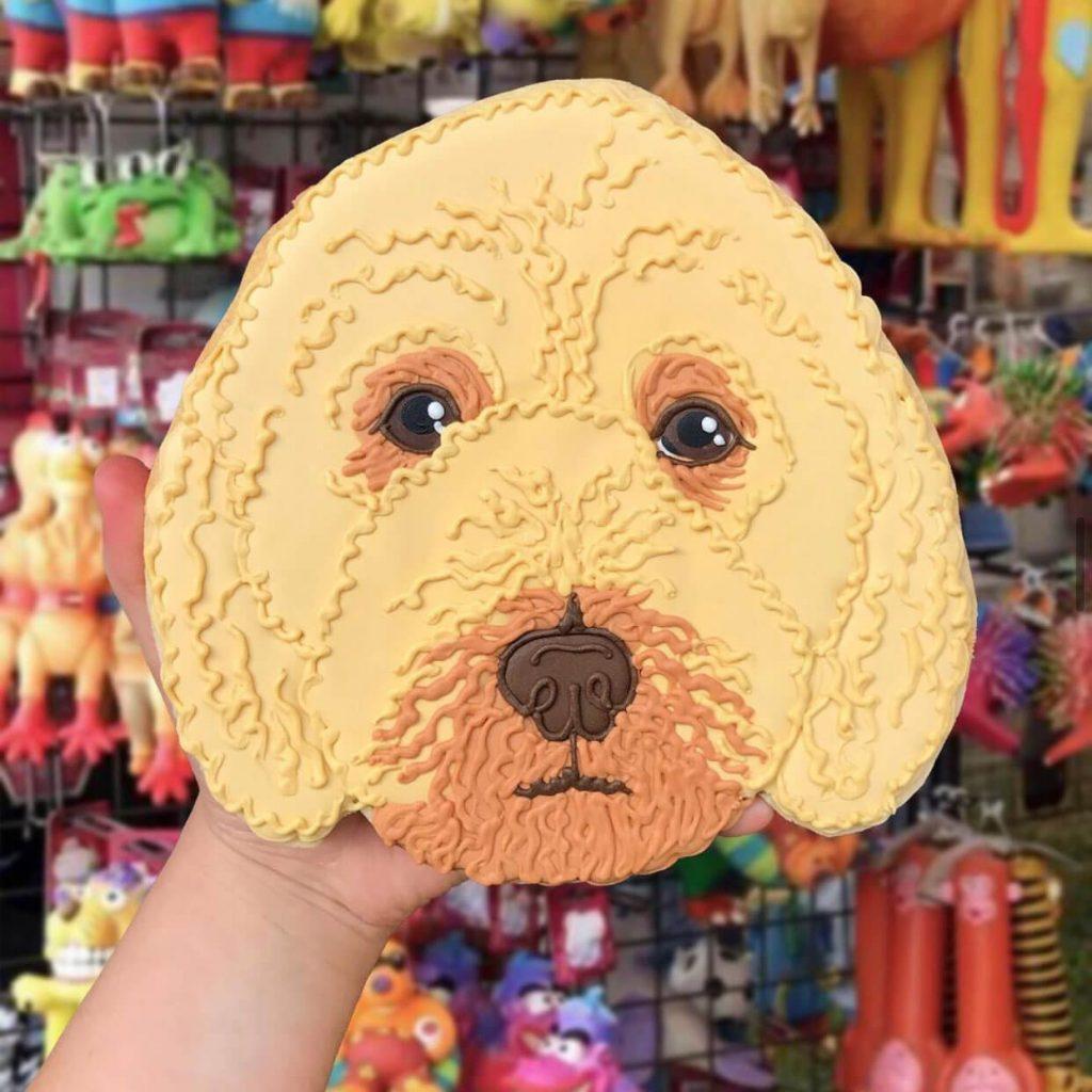 Pet Face Biscuit insta photo