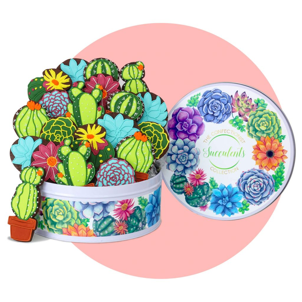 Succulents Chocolate Biscuits with pink background