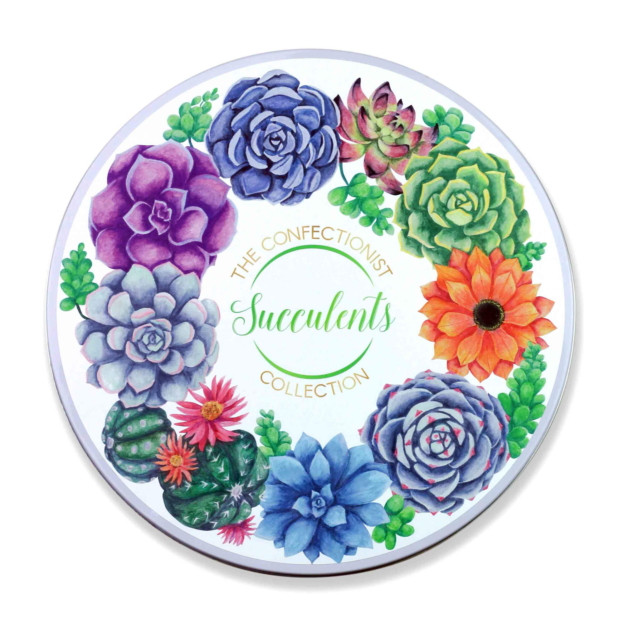 Succulents Biscuit Collection Tin Lid