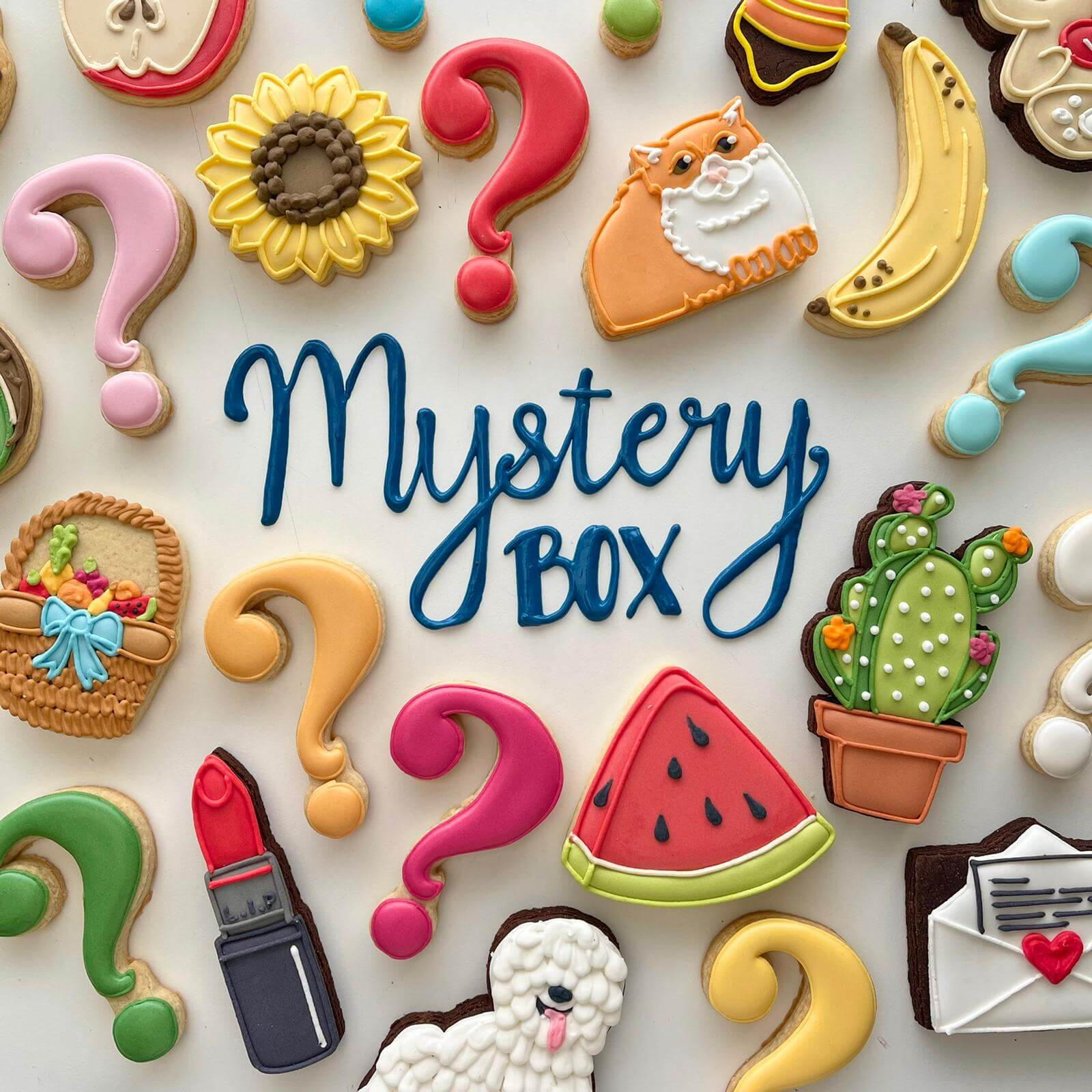 Mistery Biscuit Cookie Box